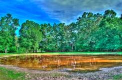 Shiloh N.M.P. (Bloody Pond)